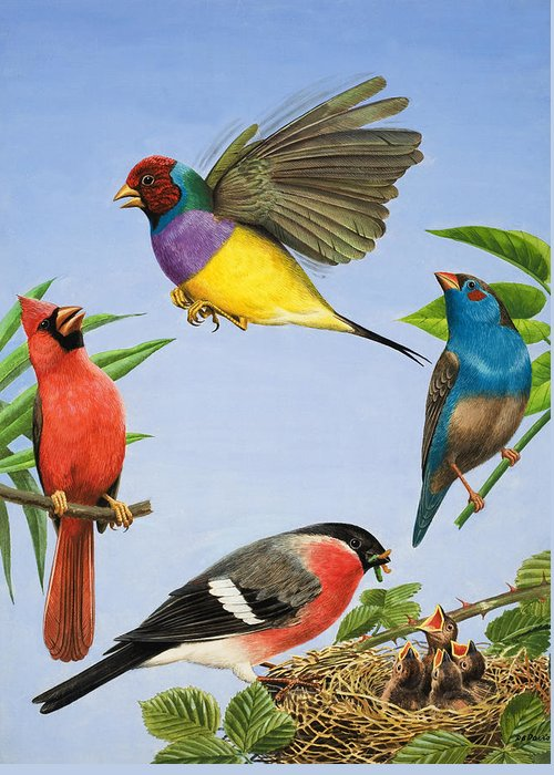 Tropical Greeting Card featuring the painting Tropical Birds by RB Davis