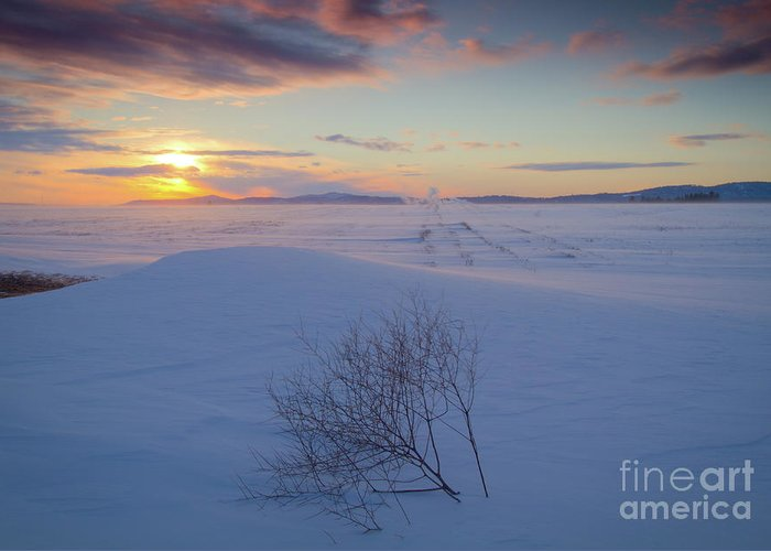 February Greeting Card featuring the photograph Tumble In The Snow by Idaho Scenic Images Linda Lantzy