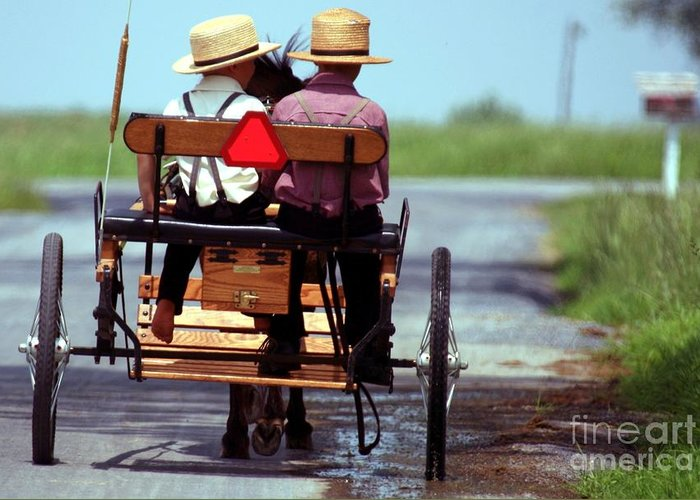 Amish Greeting Card featuring the photograph Two Little Amish Boys In A Buggy by Randy Matthews