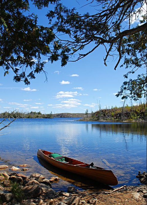 Boundary Waters Canoe Area Wilderness Greeting Card featuring the photograph Under The Cedars by Larry Ricker