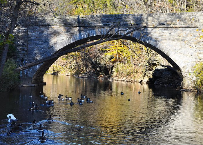 Wissahickon Greeting Card featuring the photograph Valley Green Bridge by Bill Cannon