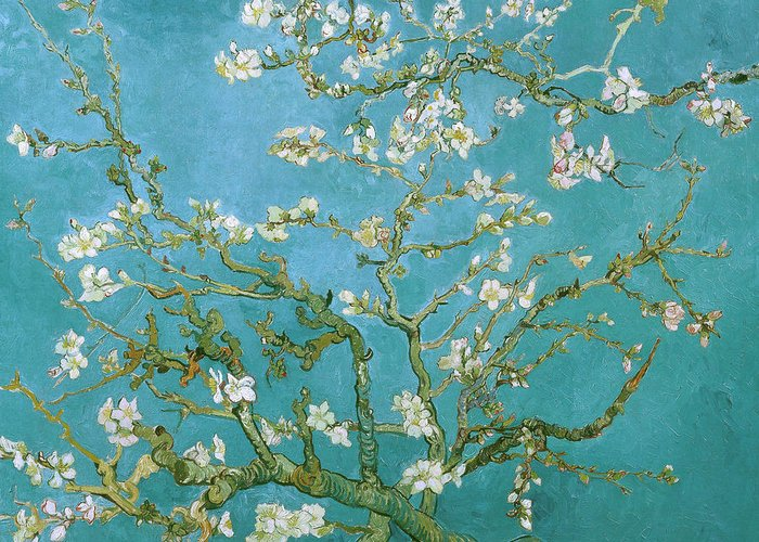 Van Gogh Greeting Card featuring the painting Van Gogh Blossoming Almond Tree by Vincent Van Gogh
