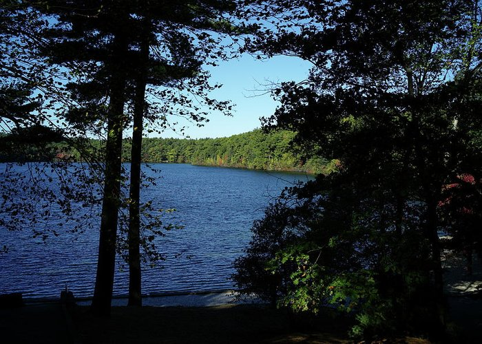Walden Greeting Card featuring the photograph Walden Pond End Of Summer by Lawrence Christopher