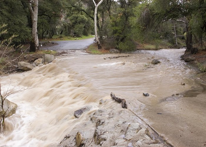 Floods Greeting Card featuring the photograph Water Flowing In The North Fork by Rich Reid