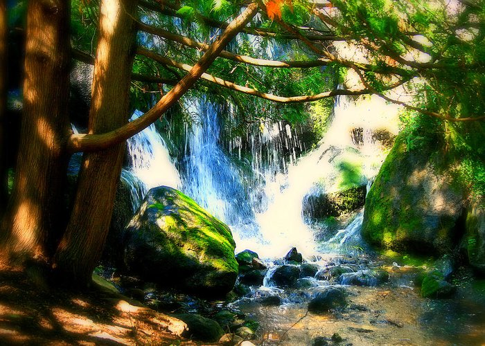 Waterfall Greeting Card featuring the photograph White Falls by Perry Webster