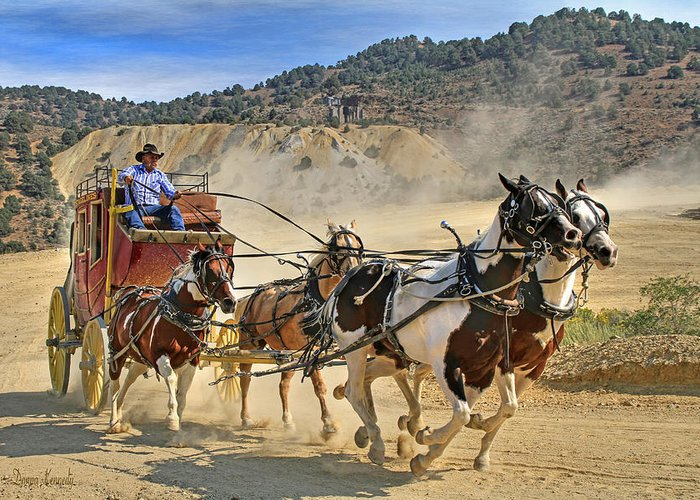 Stagecoach Greeting Card featuring the photograph Wild West Ride by Donna Kennedy