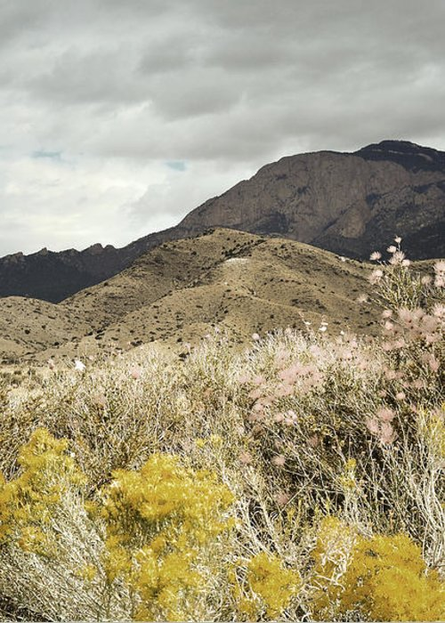 Sandia Mountains Greeting Card featuring the photograph Wildflower Mountain by Andrea Hazel Ihlefeld