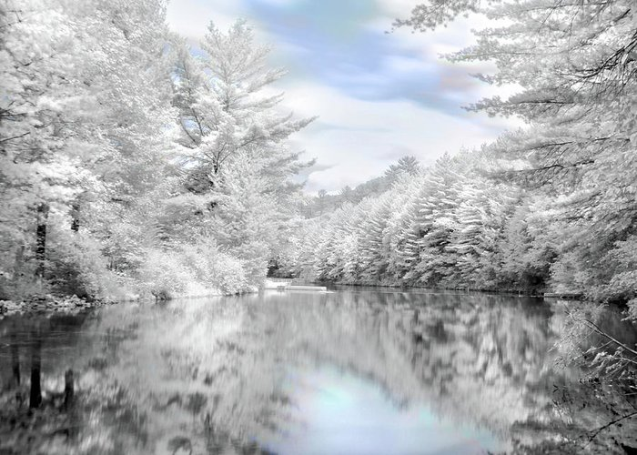 Infrared Photography Greeting Card featuring the photograph Winter At The Reservoir by Lori Deiter