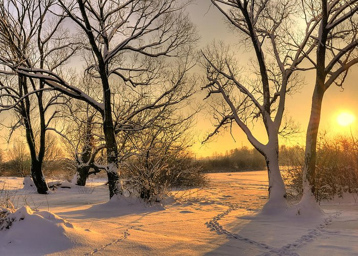 Beautiful Greeting Card featuring the photograph Winter Sunset by Jaroslaw Grudzinski