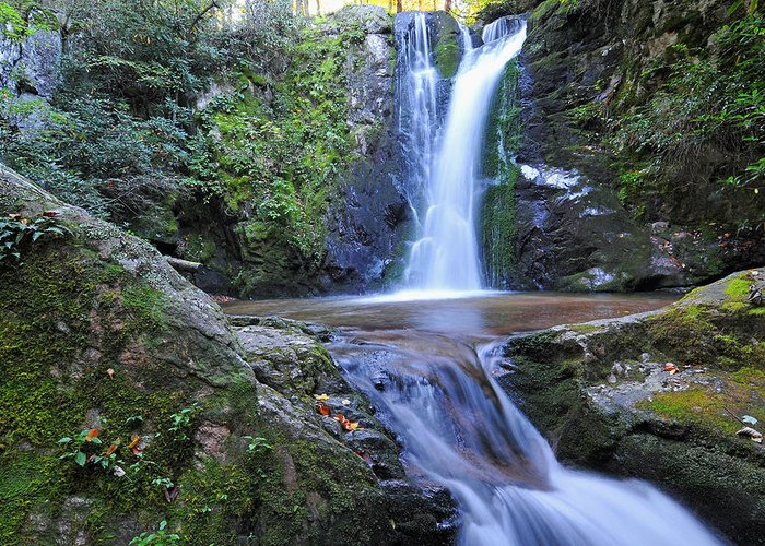 Wolf Creek Falls Greeting Card featuring the photograph Wolf Creek Falls by Alan Lenk