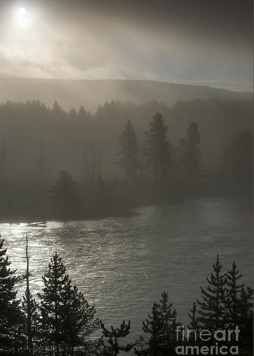 Yellowstone Greeting Card featuring the photograph Yellowstone River Fog by Sandra Bronstein