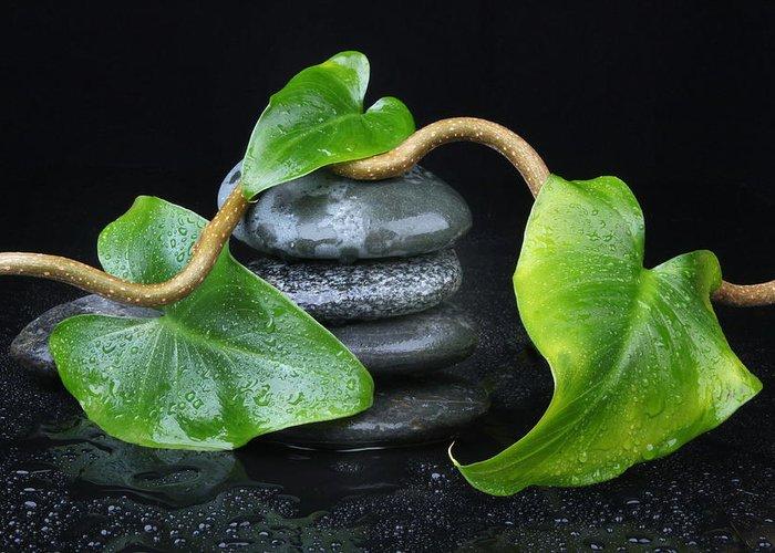 Zen Greeting Card featuring the photograph Zen... by Manfred Lutzius