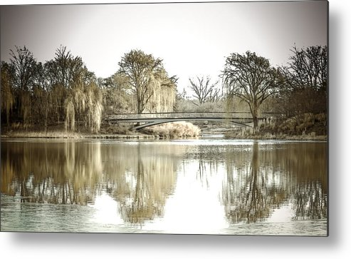 Landscape Metal Print featuring the photograph Winter Reflection Landscape by Julie Palencia