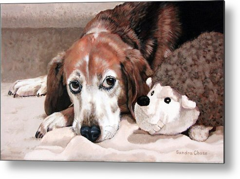 Dog Metal Print featuring the painting Zeppy And Lovey by Sandra Chase