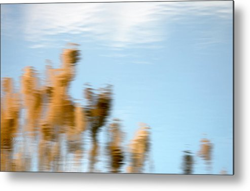 Nature Metal Print featuring the photograph Dream World by Steven Milner