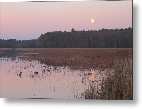 Moon Metal Print featuring the photograph Moonrise Over Waterfowl Pond by John Burk