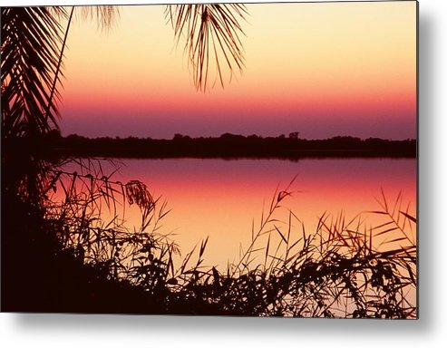 River Metal Print featuring the photograph Sunrise On The Okavango Delta by Stefan Carpenter