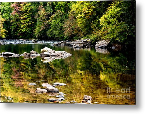 Williams River Metal Print featuring the photograph Williams River Autumn by Thomas R Fletcher