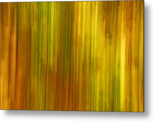 Abstract Metal Print featuring the photograph Abstract Nature Background by Gry Thunes