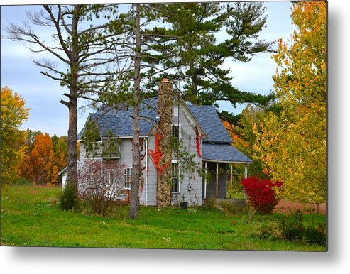 Country Cottage Metal Print featuring the photograph Country Cottage by Julie Dant