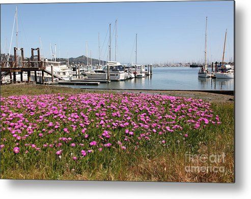 Sausalito Metal Print featuring the photograph Docks At Sausalito California 5d22695 by Wingsdomain Art and Photography