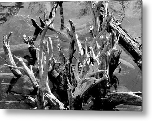 Reflection Metal Print featuring the photograph Driftwood On Lost Lake by Michelle Calkins