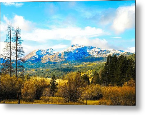 Autumn Metal Print featuring the photograph Fall Season In The Sierras by Don Bendickson