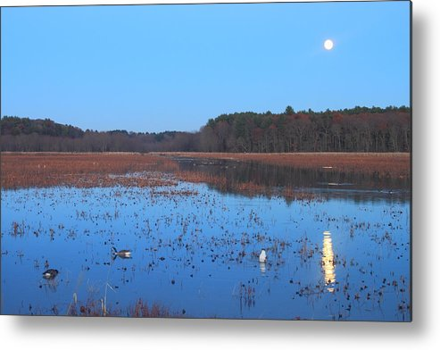 Great Meadows National Wildlife Refuge Metal Print featuring the photograph Full Moon At Great Meadows National Wildlife Refuge by John Burk