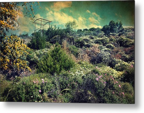Mountain Metal Print featuring the photograph Le Printemps by Taylan Soyturk