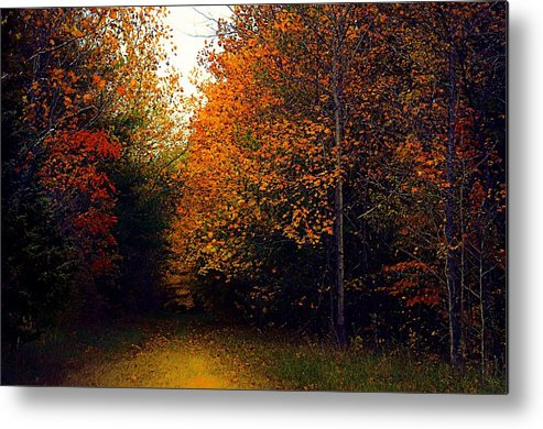 Autumn Metal Print featuring the photograph On Jan's Farm by Julie Dant
