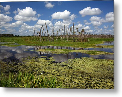 Orlando Metal Print featuring the photograph Orlando Wetlands Cloudscape 2 by Mike Reid
