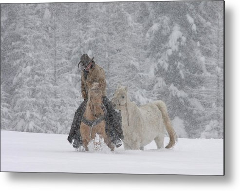 Cowboy Metal Print featuring the photograph Persevere Through All by Diane Bohna