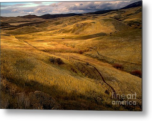 Landsacape Metal Print featuring the photograph Rolling Hills by Robert Bales