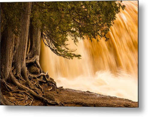 rooted In Spring mary Amerman Waterfall Cedar Tree Roots tree Roots gooseberry Falls lake Superior minnesota northern Minnesota Nature greeting Cards Spring spring Melt north Shore Powerful Humbling Beautiful nature Is Art may 1st 2013 Metal Print featuring the photograph Rooted In Spring by Mary Amerman