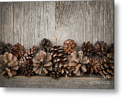 Wood Metal Print featuring the photograph Rustic Wood With Pine Cones by Elena Elisseeva