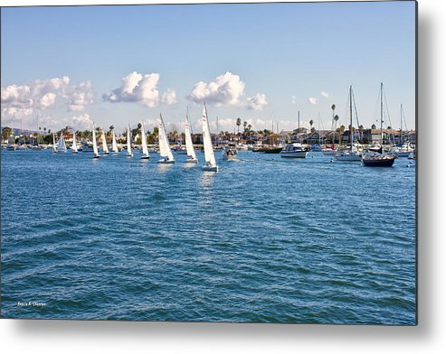 Photograph Metal Print featuring the photograph Sailing by Angela A Stanton