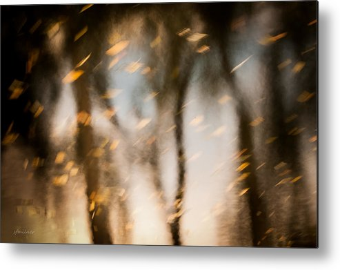Abstract Metal Print featuring the photograph Soft Autumn by Steven Milner