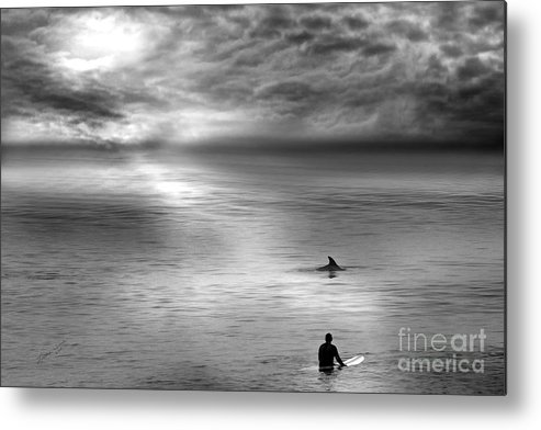 Dolphins Metal Print featuring the photograph Surfing With The Dolphin by Artist and Photographer Laura Wrede