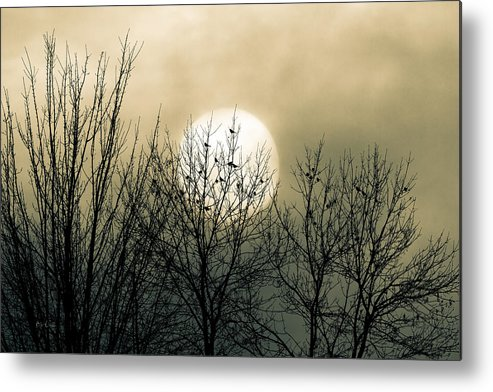 Winter Metal Print featuring the photograph Winter Into Spring by Bob Orsillo