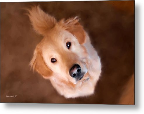 Dog Metal Print featuring the painting Wishful Thinking by Christina Rollo