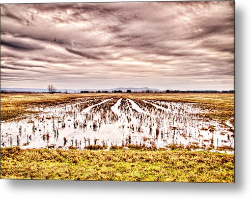 Sky Metal Print featuring the photograph 0704-8703 Winter Clouds At Holla Bend Wildlife Refuge by Randy Forrester