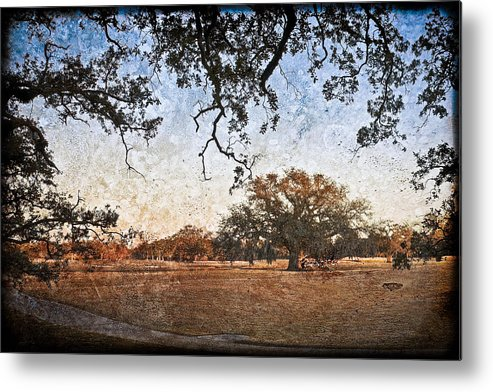 Texture Metal Print featuring the photograph Audubon Golf Course by Ray Devlin