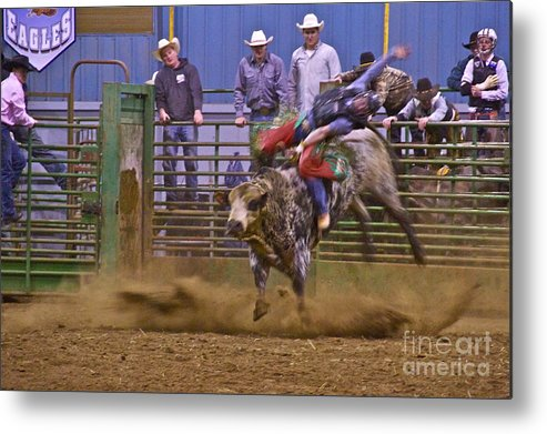 Photography Metal Print featuring the photograph Bull Rider 1 by Sean Griffin