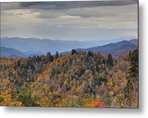 Clingmans Dome Metal Print featuring the photograph Clingman's Dome IIi by Charles Warren