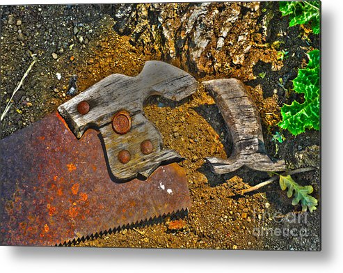 Saw Metal Print featuring the photograph Elements by Cheryl Young