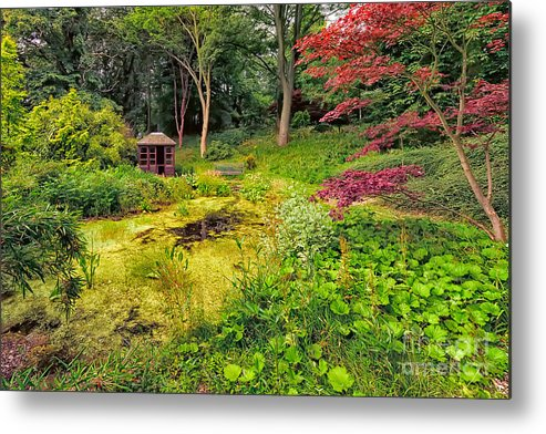Countryside Metal Print featuring the photograph English Garden by Adrian Evans