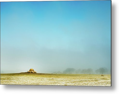 Horizontal Metal Print featuring the photograph Feeding Time by Paul McGee