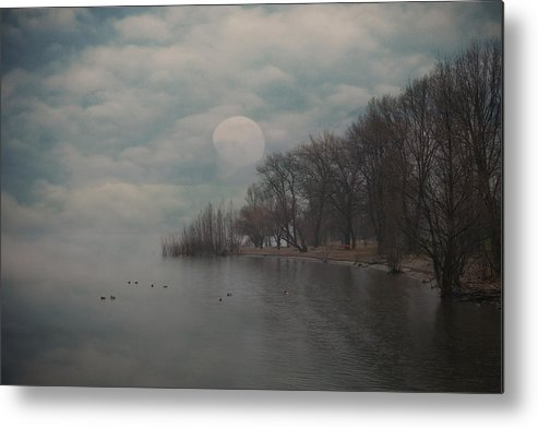 Bay Metal Print featuring the photograph Landscape Of Dreams by Joana Kruse