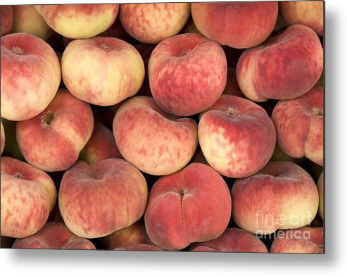 Agriculture Metal Print featuring the photograph Peaches by Jane Rix