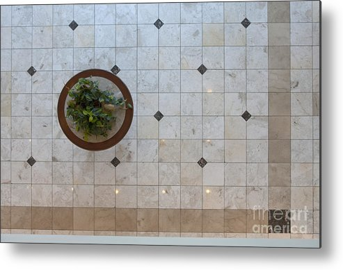 Architecture Metal Print featuring the photograph Potted Plant In Foyer Floor From Above by Will & Deni McIntyre